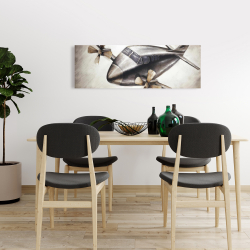 Canvas 16 x 48 - Airplane in full flight