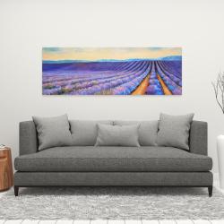 Canvas 16 x 48 - Lavender fields