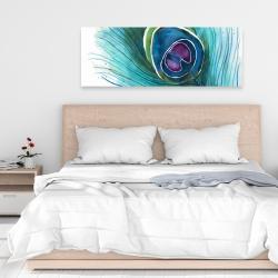 Canvas 16 x 48 - Peacock feather closeup