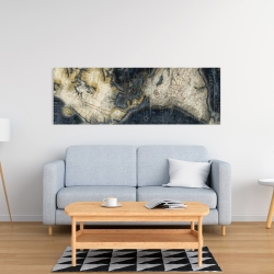 Canvas 16 x 48 - Old world map