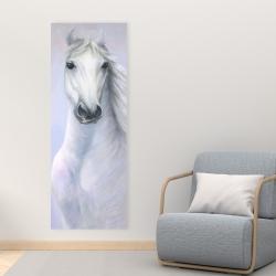 Canvas 16 x 48 - Powerful white horse