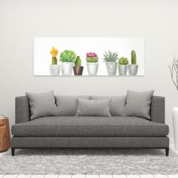 Canvas 16 x 48 - Mini cactus and succulents