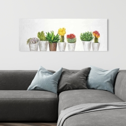 Canvas 16 x 48 - Small cactus and succulents