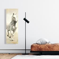 Canvas 16 x 48 - Gallant white horse