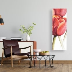 Canvas 16 x 48 - Blossoming tulips closeup