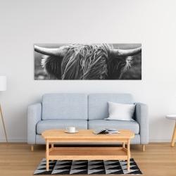 Canvas 16 x 48 - Monochrome portrait highland cow