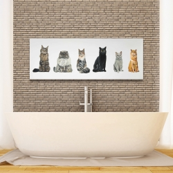 Canvas 16 x 48 - Six cats lined up