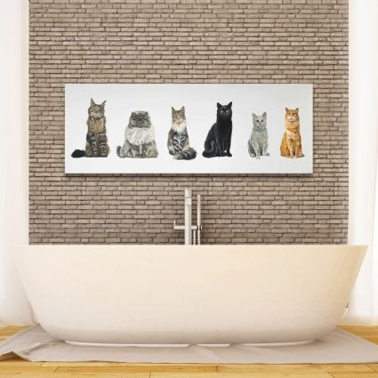 Six cats lined up