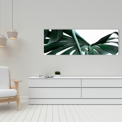 Canvas 16 x 48 - Monstera deliciosa