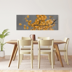 Canvas 16 x 48 - Golden wattle plant with pugg ball flowers