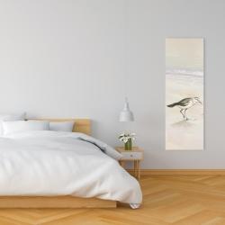 Canvas 16 x 48 - Semipalmated sandpiper on the beach
