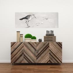 Canvas 16 x 48 - Semipalmated sandpiper