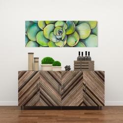 Canvas 16 x 48 - Watercolor succulent plant