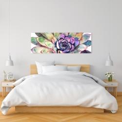 Canvas 16 x 48 - Multicolored succulent