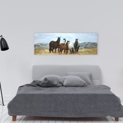 Canvas 16 x 48 - Horses in the meadow by the sun