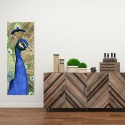 Canvas 16 x 48 - Peacock