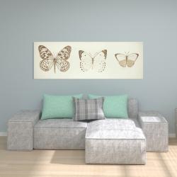 Canvas 20 x 60 - Monarch butterflies sketch