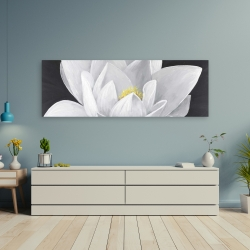 Canvas 20 x 60 - Overhead view of a lotus flower