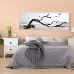 Canvas 20 x 60 - Dead tree in the middle of water