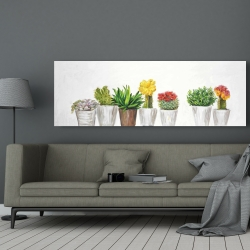 Canvas 20 x 60 - Small cactus and succulents