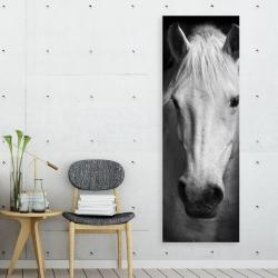 Canvas 20 x 60 - Monochrome horse