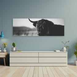 Canvas 20 x 60 - Beautiful monochrome highland cow