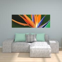 Canvas 20 x 60 - Bird of paradise flower