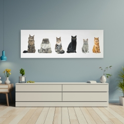 Canvas 20 x 60 - Six cats lined up