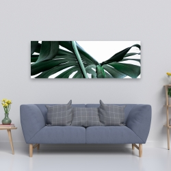 Canvas 20 x 60 - Monstera deliciosa