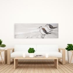 Canvas 20 x 60 - Two sandpipiers birds