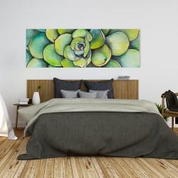 Canvas 20 x 60 - Watercolor succulent plant