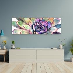 Canvas 20 x 60 - Multicolored succulent