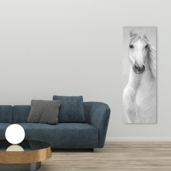 Canvas 20 x 60 - Monochrome mighty white horse