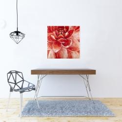 Canvas 24 x 24 - Red chrysanthemum