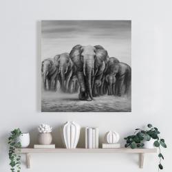 Toile 24 x 24 - Troupeau d'éléphants