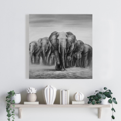 Canvas 24 x 24 - Herd of elephants