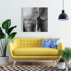 Canvas 24 x 24 - Elephant