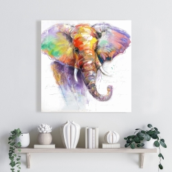 Canvas 24 x 24 - Beautiful and colorful elephant