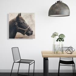 Toile 24 x 24 - Gallopin le cheval brun