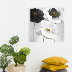 Canvas 24 x 24 - Assorted white flowers