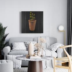 Canvas 24 x 24 - Plant of marjolaine