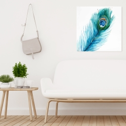 Canvas 24 x 24 - Long peacock feather