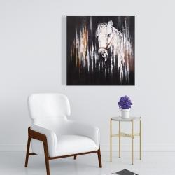Canvas 24 x 24 - White horse in the dark