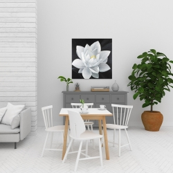 Canvas 24 x 24 - Overhead view of a lotus flower