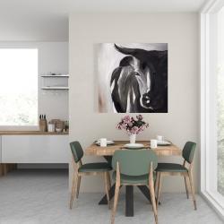 Canvas 24 x 24 - Bull head closeup