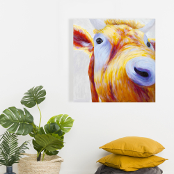 Canvas 24 x 24 - Closeup of a colorful country cow