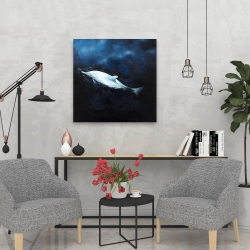 Canvas 24 x 24 - Swimming dolphin
