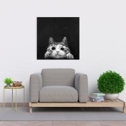 Canvas 24 x 24 - Curious cat