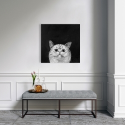 Canvas 24 x 24 - Watching cat