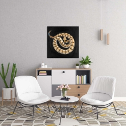 Canvas 24 x 24 - Southern timber rattlesnake